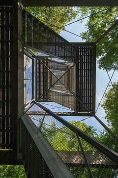 Uitkijktoren in een Drents bos nabij Exloo van Tonko Oosterink
