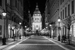 Night Walking van