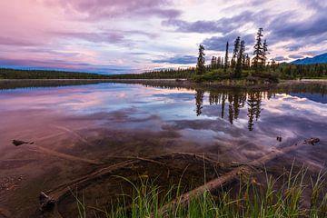 Mitternachtssonne in Alaska von Denis Feiner