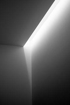Lumière sur Annemieke Linders