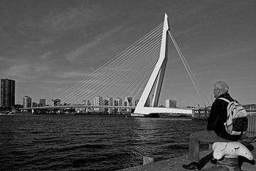 Erasmusbrug /Rotterdam  van Jo Miseré