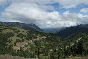Vue du chemin Hurricane Ridge sur Jeroen van Deel
