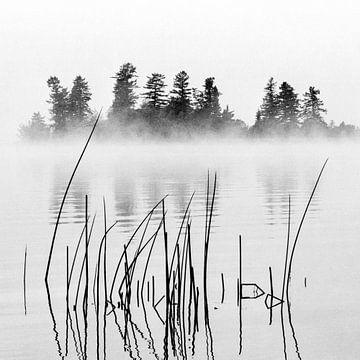 Mist sur Lieke Doorenbosch