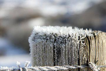 Winterkristal... van Bert - Photostreamkatwijk