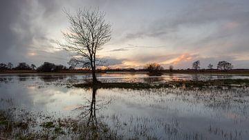 Zonsondergang in natuurgebied de Wieden van Dick Doorduin