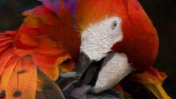 Papegaai. van Yolanda Bruggeman