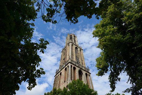 De Domtoren in Utrecht von In Utrecht