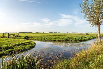 Charakteristische landwirtschaftliche Polderlandschaft in der niederländischen Region Alblasserwaard von Ruud Morijn