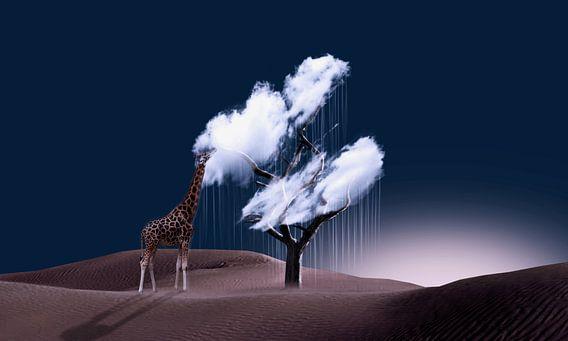 Le gout du nuage van Catherine Fortin