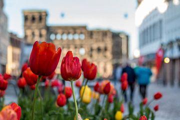 Tulpen bij de Porta Nigra, Trier (Duitsland) van Martijn Mureau
