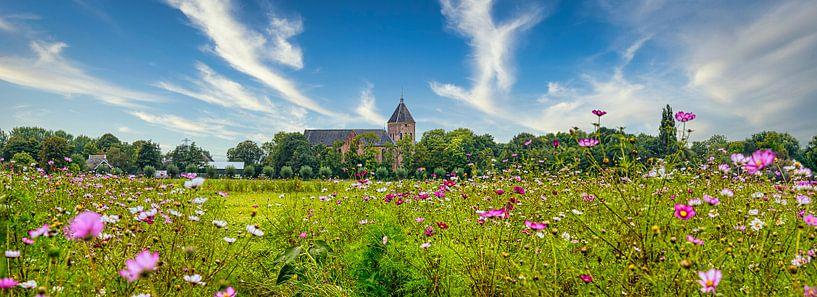 Panorama met kerk Zeerijp, Groningen met wilde bloemen in de voorgrond van Rietje Bulthuis