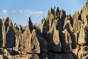 Scherpe rotsen Tsingy de Bemaraha van Dennis van de Water