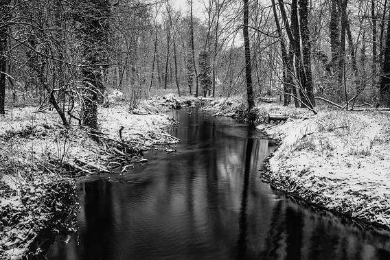 Small stream in Bekendelle van Davy Sleijster