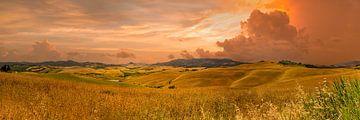 Panorama heuvels Toscane 2 van Kok and Kok