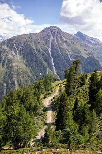 Alpenpaadje bij Grimentz