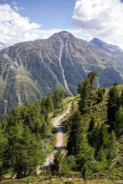 Alpenweg bei Grimentz von Sander de Jong