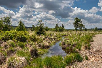 Landscape at Baraque Michel (Belgium) von Maurice Meerten