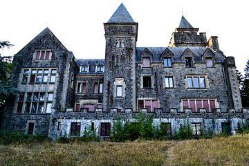 Wolfenstein Castle von Nanne Bekkema