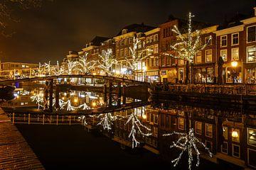 Nieuwe Rijn Leiden van Dirk van Egmond