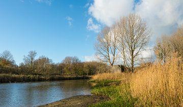 Bunte Landschaft mit Bunker von Ruud Morijn