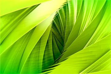 Groene bladeren van Andree Jakobson