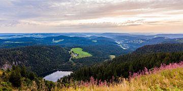 Uitzicht vanaf de Feldberg in het Zwarte Woud van Werner Dieterich