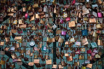 Liefdessloten op de Pont des Arts in Parijs van Suzanne Schoepe