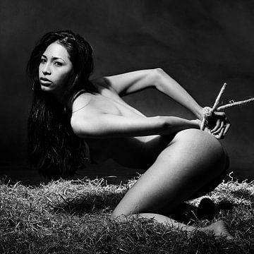Mooie naakte vrouw vastgebonden in sensuele bondage bdsm setting van william langeveld