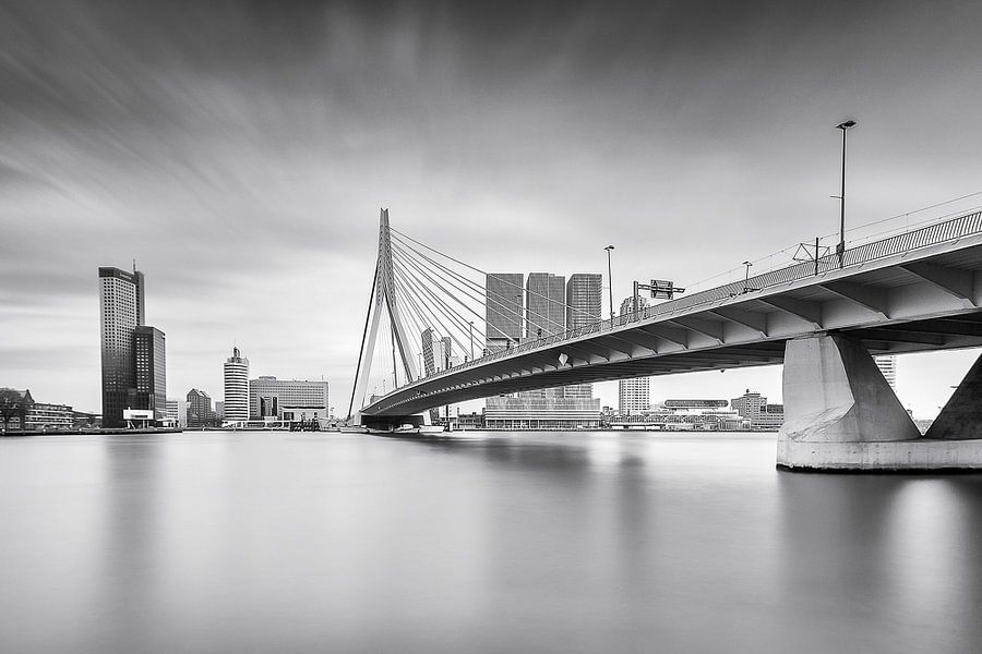 De Rotterdamse skyline