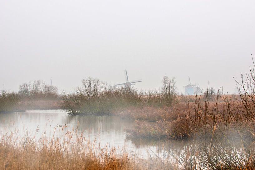 Kinderdijk met de windmolens in de mist van Brian Morgan