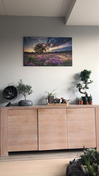 Kundenfoto: Blühende Heide von Martijn van Dellen, auf leinwand