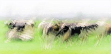 Koeien in de wei (impressionistisch) van René van Leeuwen