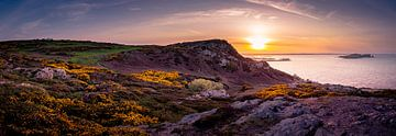 Panorama Howth bij zonsondergang van Ronne Vinkx