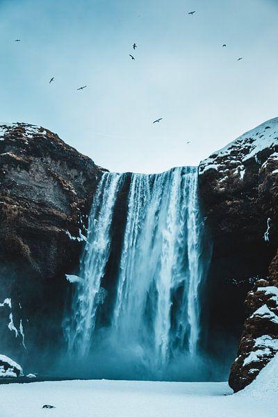 Skogafoss-Wasserfall Island von Prints by Abigail Van Kooten