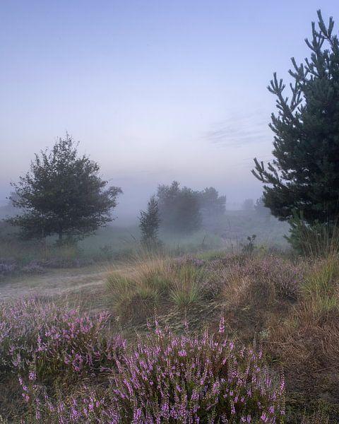 Heide met ochtendmist van Manja van der Heijden
