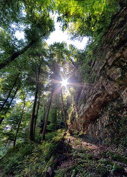De Mullerthal Trail Luxemburg von Rob van der Teen