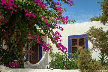 Spaanse huis met een Bougainvillea van