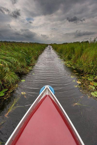 In een fluisterbootje door de Weerribben van Jenco van Zalk