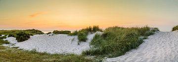 Panorama van de Oostzeeduinen van Ursula Reins