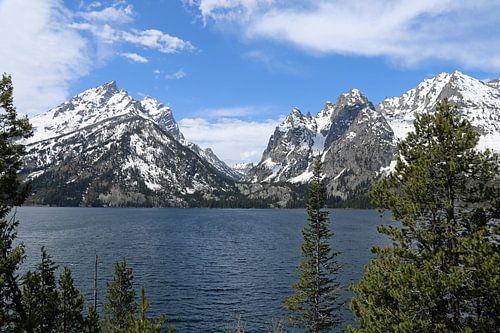 Welkom in Grand Teton National Park van Lisa Poelstra