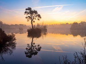 Lever du soleil dans les Oisterwijkse Vennen sur Evelien Oerlemans