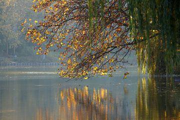 autumn reflection van Bernd Hoyen