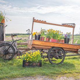 Frühling -Fahrrad auf Texel. von Justin Sinner Pictures ( Fotograaf op Texel)