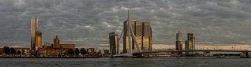 Skyline Rotterdam von Hans Kool