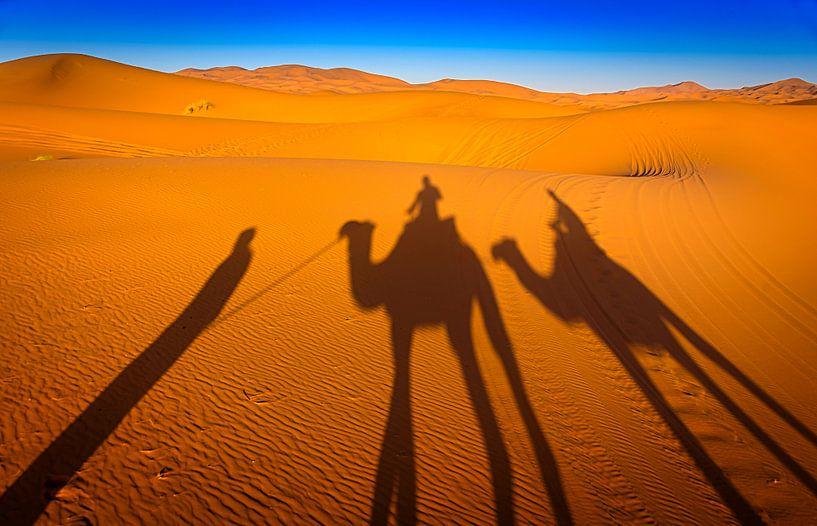 Camel ride in Marokko van Rietje Bulthuis