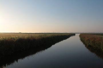 Landschap van Sander Maas