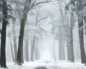 Wind en sneeuw stormen.