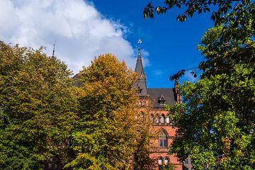 Blick auf das Ständehaus in Rostock im Herbst von Rico Ködder