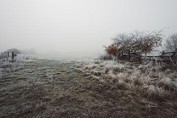 Veld in de mist van Skyze Photography by André Stein