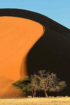 Zandduin sur Antwan Janssen
